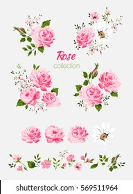 Beautiful isolated pink flowers on the white background. Set of different floral design elements-Pink rose, chamomile, leaf, branch. All elements are isolated and editable.