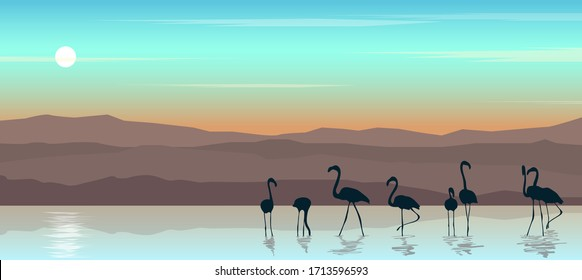 Beautiful landscape with sunset.Vector illustration of seascape with flamingos.