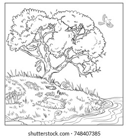 Beautiful landscape with tree,bird, river,stones and bush with berries.Page of coloring book. Vector sketch