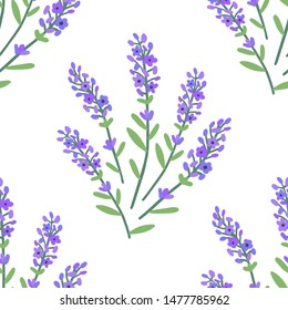 Beautiful Lavender Pattern. Seamless Background. Vector.