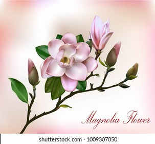 Beautiful light pink magnolia flowers on a branch with leaves on pink background with lights. Vector card with text welcome spring.