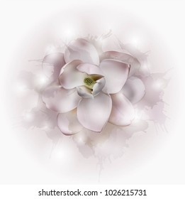 Beautiful light pink silver magnolia flower isolated on a white background. Vector.