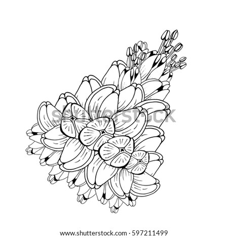 Beautiful lilac isolated handdrawn spring flower coloring stock hand drawn spring flowerloring book page design greeting mightylinksfo