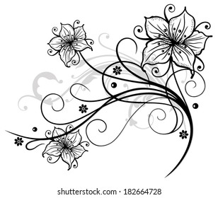 Beautiful lilies and abstract flowers