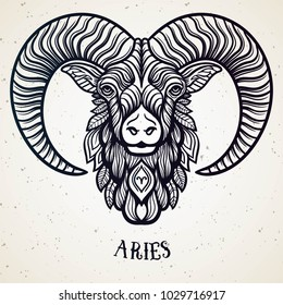 Beautiful line art filigree zodiac symbol. Black sign on vintage background. Elegant jewelry tattoo. Engraved horoscope symbol. Doodle mystic drawing with calligraphy lettering. Aries