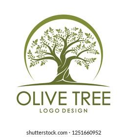 Beautiful logo olive tree on white background. Modern vector sign. Premium quality illustration logo design concept