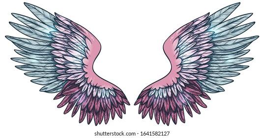 Beautiful magic glittery pink blue angel wings, hand drawn vector