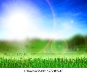 Beautiful meadow, green grass, blue heaven