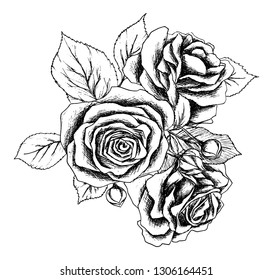 Beautiful monochrome black and white bouquet rose isolated on background. Hand-drawn. Design greeting card and invitation of the wedding and other holidays.