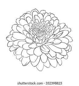 Black and white daisy images stock photos vectors shutterstock beautiful monochrome black and white flower isolated on white background hand draw contour line mightylinksfo