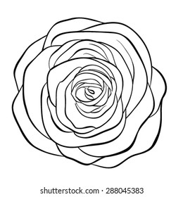 Beautiful monochrome black and white rose isolated on white background. Hand-drawn contour line. for greeting cards and invitations of wedding, birthday, mother's day and other seasonal holiday