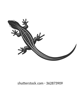 Beautiful  monochrome lizard, lizard silhouette. Vector illustration.
