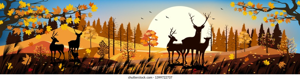 Beautiful panorama landscapes of Countryside in autumn, Panoramic of mid autumn with sunset, Silhouette of deers in the forest during autumn season, Natural background