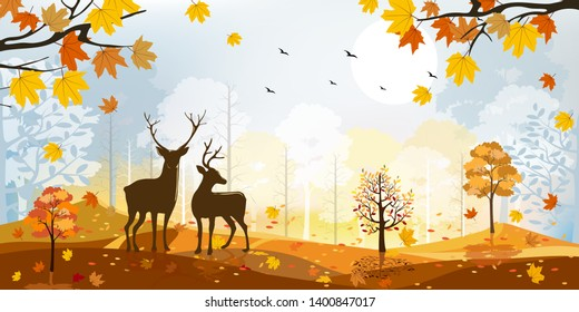 Beautiful panorama landscapes of Countryside in autumn, Panoramic view sunny day in mid autumn Silhouette of deers in the forest during autumn season, Natural background