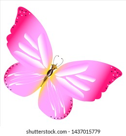 beautiful pink butterflies,isolated on white