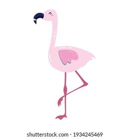 Beautiful Pink Flamingo Vector Ilustration