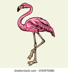 Beautiful pink flamingo in vintage style isolated vector illustration