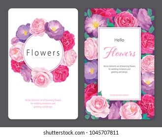 Beautiful pink and purple roses flower background template. Vector set of blooming floral for wedding invitations and greeting card design.