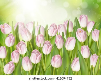 Beautiful pink tulip. Pink tulips in the garden. EPS 10 vector file included