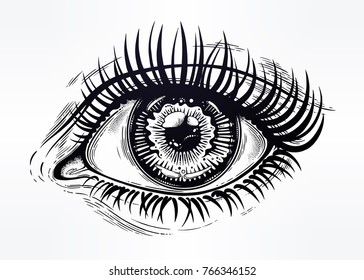 Beautiful realistic eye of a human girl with highly detialed pupil, iris and long dramatic eyelashes. Isolated vector illustration. Emotional expression, sticker, tattoo art. Trendy print.