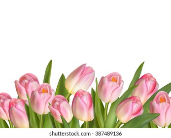 Beautiful realistic tulip bouquet. EPS 10 vector file included