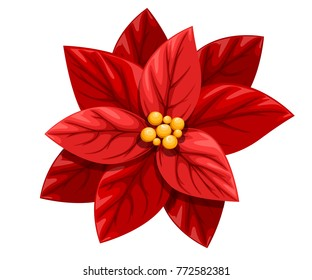 Red Christmas Flower.Christmas Poinsettia Images Stock Photos Vectors