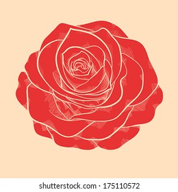 beautiful red rose in a hand-drawn graphic style in vintage colors