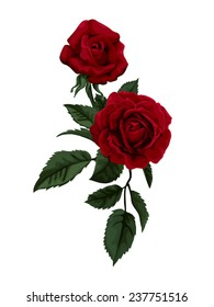 Beautiful red rose isolated on white.  Perfect for background greeting cards and invitations of the wedding, birthday, Valentine's Day, Mother's Day.