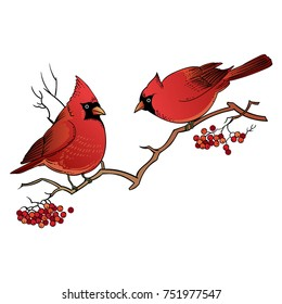 Beautiful retro Christmas card with birds. Hand drawn vector illustration. Highly detailed winter vintage design for greeting card, party invitation, holiday sales, poster, web page, packaging etc.