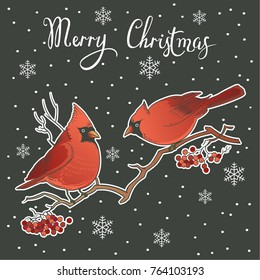 Beautiful retro Christmas card with birds. Hand drawn vector illustration. Highly detailed winter vintage design for greeting card, party invitation, holiday sales.