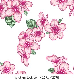 Beautiful seamless floral light pattern with apple flowers. Nature botanical vector background illustration. Stock graphic design.