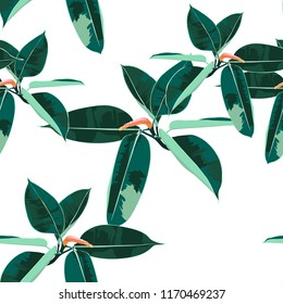 Beautiful seamless floral pattern background with tropical ficus elastica. Perfect for wallpapers, web page backgrounds, surface textures, textile. White background.