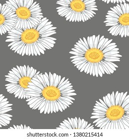 Beautiful seamless pattern with daisy flowers on dark grey background. Vector illustration