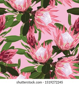 Beautiful seamless pattern of Tropical protea flowers, jungle leaves, exotic print.