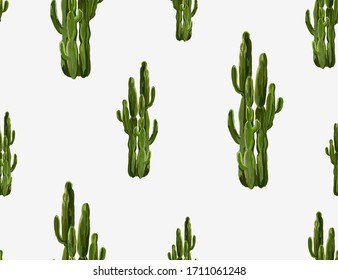 Beautiful seamless vector floral summer tropical pattern background with cactuses, succulents. Perfect for wallpapers, web page backgrounds, surface textures, textile. Isolated on white background.
