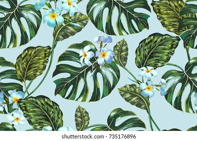 Beautiful seamless vector floral summer pattern background with tropical flowers, jungle leaves, monstera leaf. Exotic botanical wallpaper illustration