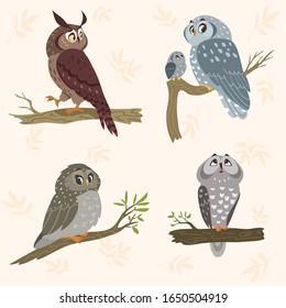 Beautiful set with cartoon cute owls sit on branch tree. Stylish vector illustration