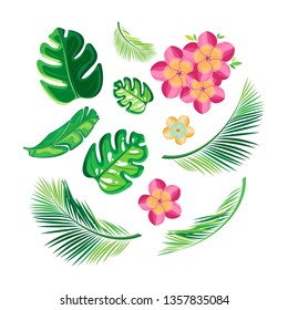 Beautiful set with green tropical leaves and flowers on transparent background. Vector isolated objects