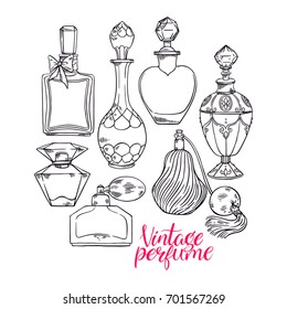 beautiful set with a variety of sketch womens perfume bottles. hand-drawn illustration