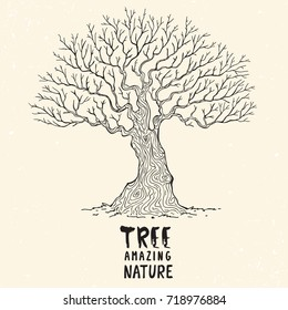 Beautiful silhouette of a huge and beautiful tree. Vector illustration, sketch