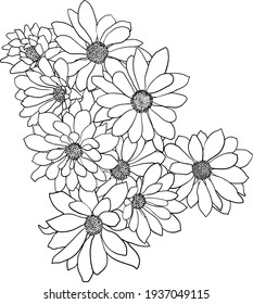 Beautiful sketch flower on white background.