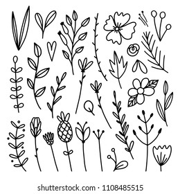 Beautiful sketch flowers, plants, botanical illustrations. Line art hand drawn floral set