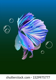 Beautiful, sparkling, magic fish queen swimming under water vector