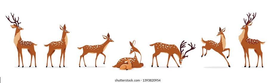 Beautiful stylized cartoon deers on white background. Vector illustration