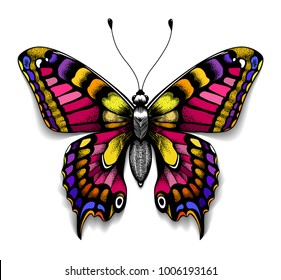 Beautiful tattoo for your chest. Colorful Machaon butterfly. Tropical realistic butterfly with shadow. Symbol of femininity.