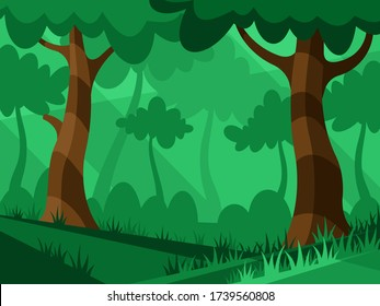 Beautiful tropical forest. Light through the trees in the forest. Nature landscape in the forest at sunset