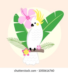Beautiful tropical parrot vector illustration