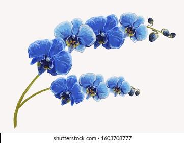 Beautiful tropical vintage blue orchid flower set floral background. Exotic jungle wallpaper.