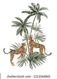Beautiful tropical vintage illustration background with palm trees, leopard. Isolated on white  background. Exotic jungle wallpaper.
