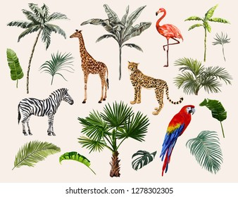 Beautiful tropical vintage illustration background with palm trees, leaves,  leopard, zebra, giraffe, parrot, flamingo. Isolated on white background. Exotic jungle wallpaper.